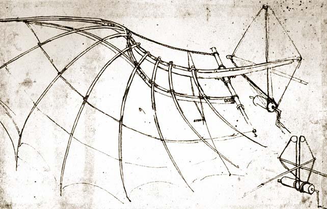 leonardo-da-vinci-bird-wing-with-mechanical-connections6