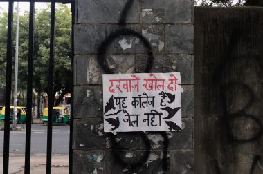 Disciplining the Cherry Orchard: Campus Tales from Delhi