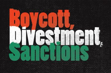 13 years of the Palestinian BDS Movement