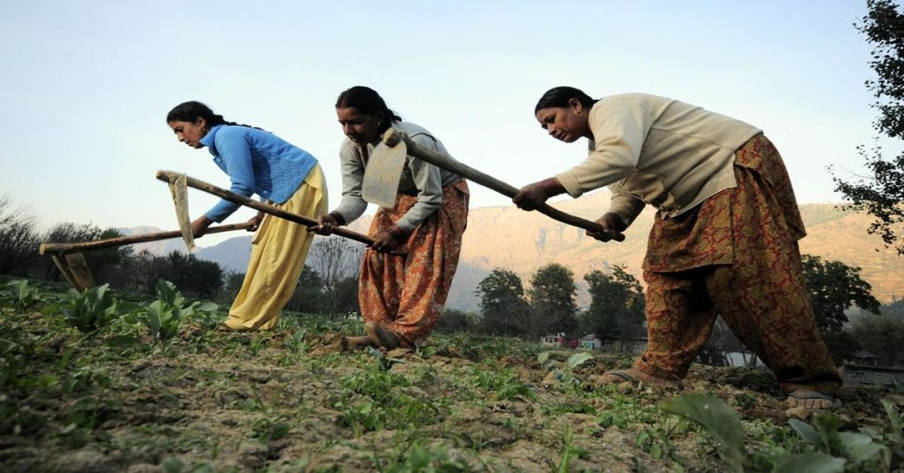 Women from various corners of the country intervene to prevent forest dwellers' evictions