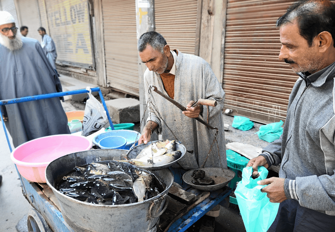 Kashmir: Where There's No One to Fish for