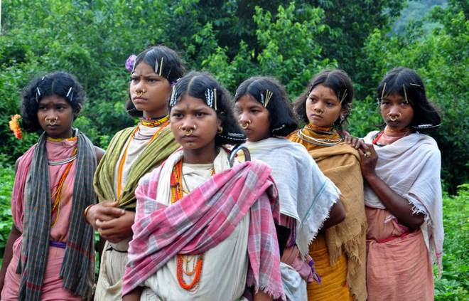 Jharkhand Polls: Niyamgiri residents flee from villages due to fear of harassment