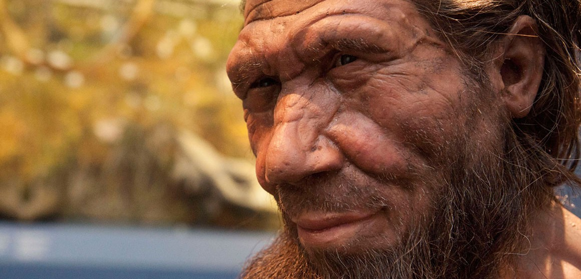 Neanderthal DNA in Africans suggest back-migration to Africa from present-day Europe